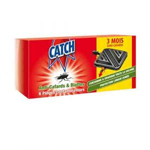 INSECTICIDES CATCH BLATTES-6 PIECES|Glotelho